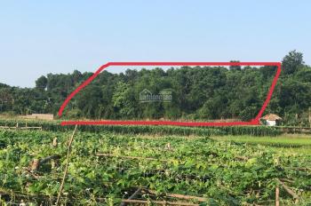 5200m2 view cánh đồng thoáng mát phù hợp làm nhà vườn nghỉ dưỡng tại Lương Sơn, Hoà Bình