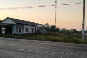 Cần bán gấp 3,5 ha mặt tiền Tỉnh Lộ 8, xã Tân An Hội, Củ Chi