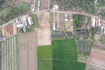 Cần bán trang trại 1700m2 Phường Bảo Vinh, TP Long Khánh, chính chủ, giá 3 tỷ