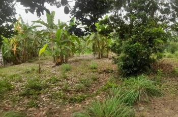 Chính chủ muốn nhượng lại 2450m2 đất thổ cư Lương Sơn, Hòa Bình làm nghỉ dưỡng cuối tuần, nhà vườn
