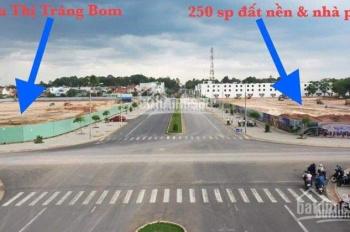 Bán đất ngay siêu thị đầu tiên của TT Trảng Bom, 5 mặt tiền đường được NH hỗ trợ 60%, giá 14.3tr/m2