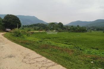 Cần chuyển nhượng lô đất 3900m2 đất làm nhà vườn nghỉ dưỡng giá rẻ tại Hòa Sơn, Lương Sơn, HB