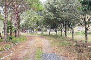 Bán đất nghỉ dưỡng đầy đủ tiện ích TP Bảo Lộc
