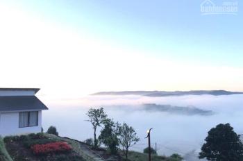 Sang nhượng farmstay 2000m2 view rất đẹp có thể làm cafe check - in săn mây
