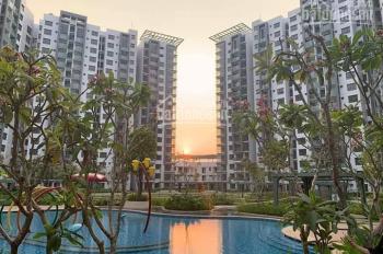 Chuyển nhượng căn hộ giá tốt tại Celadon City - thích hợp định cư và đầu tư dài hạn