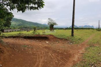 Cần bán 1000m2 đất thổ cư nhà vườn tại Cư Yên giá hợp lý 730 triệu