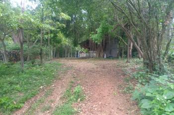 Bán đất nằm trong thung lũng gần sân golf Phượng Hoàng, tại Lương Sơn, Hòa Bình, diện tích 7260m2
