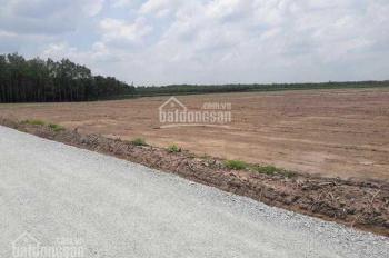 Đất đẹp giá tốt ở Chơn Thành, DT:1000m²,           giá chỉ:550k/m²,SHR.