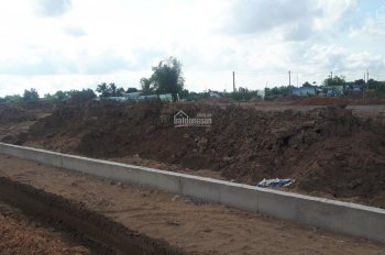 Bán đất mặt tiền Quốc Lộ 50, Xã Tân Lân, Cần Đước