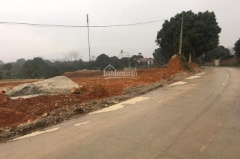 Cần bán 5000m2 phù hợp làm nhà xưởng, kho bãi tại Lương Sơn, Hòa Bình. Giá rẻ