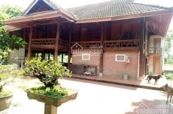 Cần chuyển nhượng biệt thự nhà sàn tại Hòa Sơn - Lương Sơn - Hòa Bình
