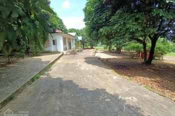 Bán đất sổ đỏ thổ cư xã Tản Lĩnh, gần cổng vườn Quốc Gia, lô góc 3 mặt thoáng 2 mặt tiền lớn