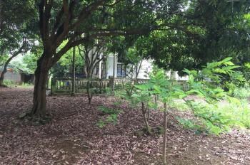 Cần bán nhanh lô đất 5450m2 đã có khuôn viên nhà vườn giá rẻ tại xã Liên Sơn, Lương Sơn, HB