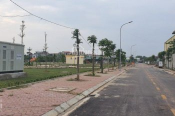 Mở bán đất sổ đỏ khu đô thị Dĩnh Trì, tặng thêm chiết khấu. Alo em: 0962374177