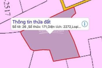 Khách ngộp Covid cần bán gấp 2300m2 đất ở tại Bạch Lâm, Gia Tân 2