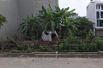 Bán đất dịch vụ Tân Tây Đô: 48m2, xung quanh đã xây nhà, sổ đỏ lâu dài.