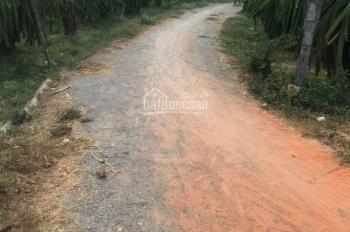 Cần ra gấp đất GĐ 1400m2, thổ cư 1100m2, xã Tiến Lợi, Phan Thiết, Bình Thuận