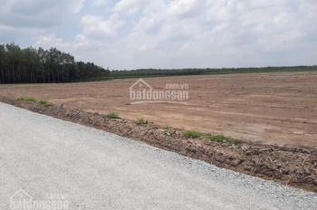 Làm ăn thua lỗ cần bán gấp lô đất 1000m²/550tr có SHR, sang tên trong tuần, ở Chơn Thành Bình Phước