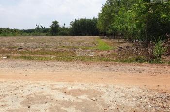 Bán đất gần sát dự án KCN Hiệp Thạnh, Gò Dầu. Diện tích: 5 x 28 (20m2 thổ cư), giá: 350 triệu