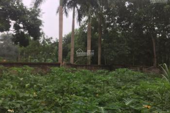 Cần bán nhanh lô đất 400m2 đã xây dựng tường bao xung quanh giá rẻ tại Nhuận Trạch, Lương Sơn, HB
