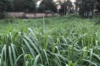 Thiết tha cần bán 950m2 đất thổ cư có ao trên đất và suối chảy sau nhà. LH: 0867007589