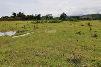 Cần bán gấp 1000m2 đất thổ cư giá cực rẻ chỉ với 730 triệu tại, Lương Sơn, Hòa Bình