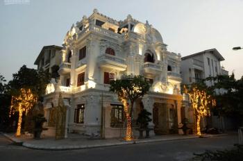 Villa - lâu đài kiến trúc Pháp tại KĐT Việt Hưng, gần TTTM Vincom Long Biên