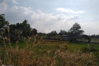 Bán đất nhà vườn đường vào mặt tiền Kênh Đá Hàng, xã Bình Mỹ, Củ Chi