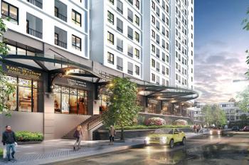 Lai Suất thấp quá mua Kiot chung cư hót nhất kinh doanh 6 năm đến 7 năm thu hồi vốn. Vừa có lãi vốn