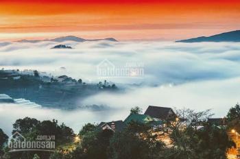 Bán gấp siêu phẩm 4800m2 20 MT Hoàng Hoa Thám, view cực đẹp bán lỗ 10tr/m2 cách Hồ Xuân Hương 7phút