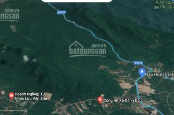 Đất đẹp huyện Phú Quốc 30 hecta