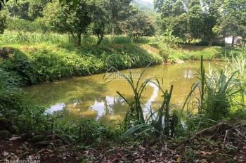Chỉ 4 tỷ có ngay 1ha đất thổ cư Lương Sơn, Hòa Bình làm nghỉ dưỡng cực đẹp