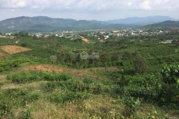 Bán đất nghỉ dưỡng diện tích 25000m2, view đẹp đường Lê Thị Riêng, TP Bảo Lộc