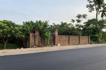 Bán đất 50 năm ở Đại Lộ Thăng Long, xã Song Phương, huyện Hoài Đức, Hà Nội