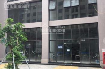 Chính chủ cần bán căn hộ chung cư 987 Tam Trinh, Quận Hoàng Mai, Hà Nội