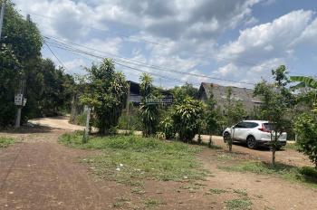 Bán gần 2 sào vườn cây ăn trái có sẵn nhà cấp 4 Bình Lộc, TP Long Khánh