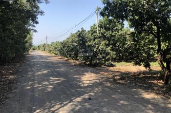 Kẹt tiền cần bán gấp mảnh vườn 2 sào 1 đường đá mi ở xã Phú Ngọc, huyện Định Quán