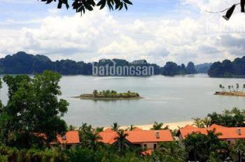 Cần bán nhiều ô đất nền liền kề và biệt thự Tuần Châu, Hạ Long giá từ 7tr/m2. LH 0886.523.295