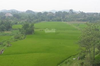 Cần bán lô đất 3250m2 đã có khuôn viên nhà vườn vị trí đẹp giá rẻ tại xã Yên Bình, Thạch Thất, HN