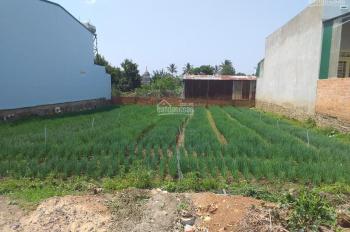 Bán đất thổ cư giá rẻ hẻm Thống Nhất - Phú Hội - Đức Trọng - Lâm Đồng
