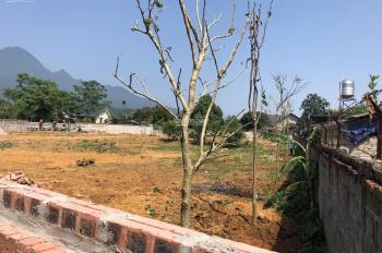 Chính chủ bán 3077m2 đất làm trang trại nhà vườn xã Vân Hòa, Ba Vì, giá 310 triệu/sào