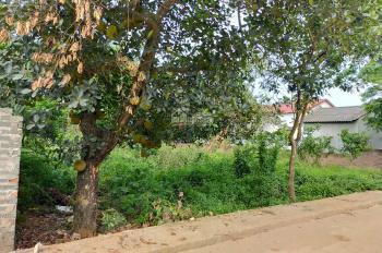 Chính chủ bán đất Phú Cát, CNC Hòa Lạc, 290 m2, MT 10,3m, chỉ 1,35 tỷ, LH Ơ961.266.229