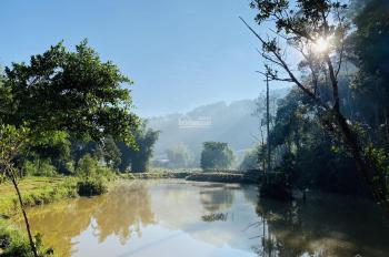 Bán đất view cực đẹp bên cạnh Ma Rừng Lữ Quán. Thuận tiện làm khu du lịch nghỉ dưỡng