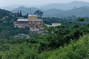 Bán đất Bảo Lộc 19.500m2, 100x195m, đường ô tô, view ảo diệu, hướng chùa Pháp Ấn