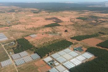 Đầu tư đất ngay Khu sinh thái 3,3ha và sân bay Phan Thiết