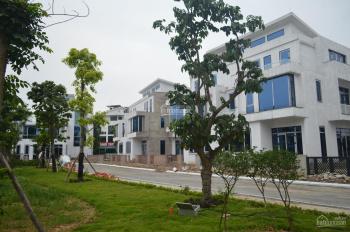 Biệt thự song lập chính chủ cần bán 175m2, hoàn thiện cơ bản KĐT Đặng Xá LH 0358336745
