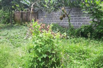 Đất nhà ở , đất vườn ,diện tích lớn dễ xây trang trại khu nghỉ dưỡng