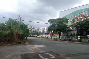 Nợ tiền ngân hàng bán gấp lô đất xã Phong Phú, Bình Chánh rẻ hơn thị trường 1tỷ