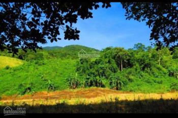 Cần bán lô đất nông nghiệp, tại Buôn Ma Nhuê B, xã Đất Bằng, huyện Krông Pa