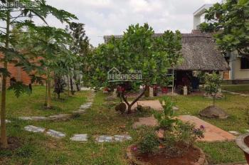 PaPa Farm Riverside, nền nhà vườn sinh thái nghỉ dưỡng ven sông mát mẻ